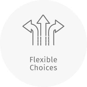 dZine flexible choices