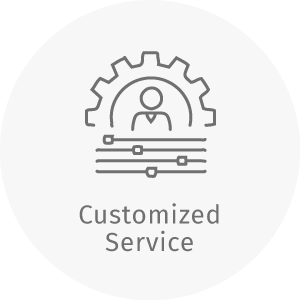 dZine customized service next