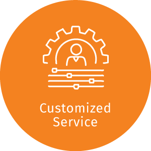 dZine customized service